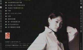 陈琳/韩磊歌曲《我不愿爱得太疲惫》歌词+试听有感