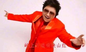 韩红歌曲《映山红》歌词+试听有感