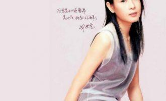 刘若英经典歌曲《蝴蝶》歌词+试听有感