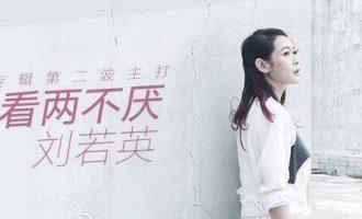 刘若英的歌《相看两不厌》歌词+试听有感
