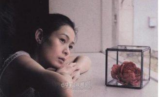 刘若英经典老歌《一辈子的孤单》歌词+试听有感