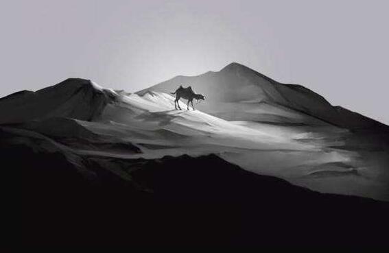 薛之谦 骆驼
