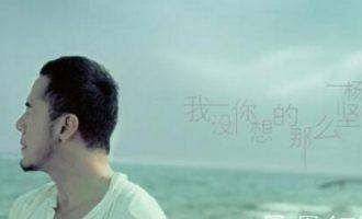 杨坤的歌《我没你想的那么坚强》歌词+试听有感