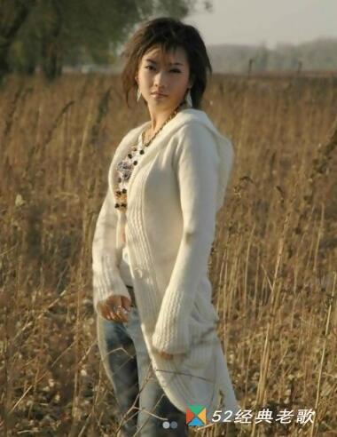 陈瑞的歌曲《没人心疼的玫瑰》