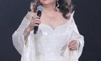 徐小凤歌曲《一个一个想你的日子》歌词+试听有感