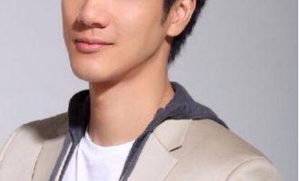 王力宏/任家萱歌曲《你是我心内的一首歌》歌词+试听有感