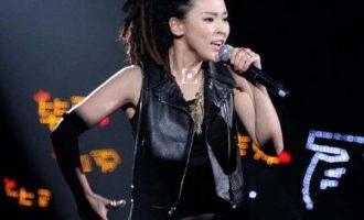 歌手 毕夏