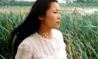 田震的歌《草原之夜》歌词 试听有感