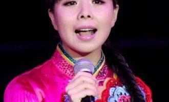 王二妮歌曲《过年的味道》歌词 试听有感