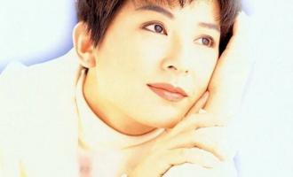 陈淑桦歌曲《傲慢与偏见》